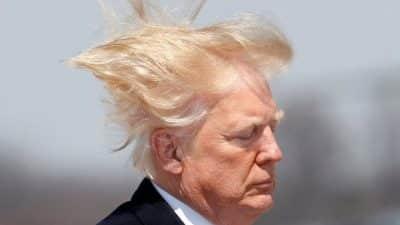 Donald Trump décoiffé