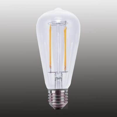 Zoom sur les ampoules LED