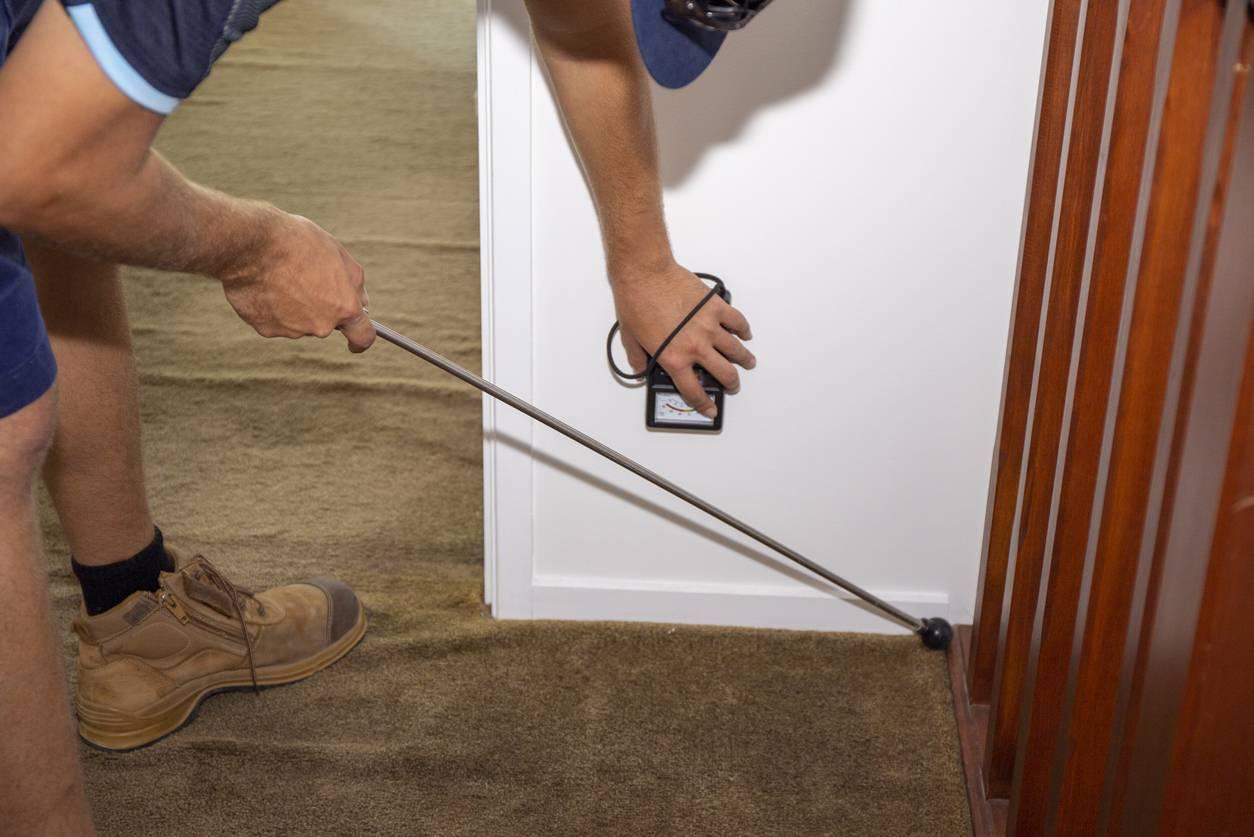 diagnostic immobilier maison appartement inspection termites